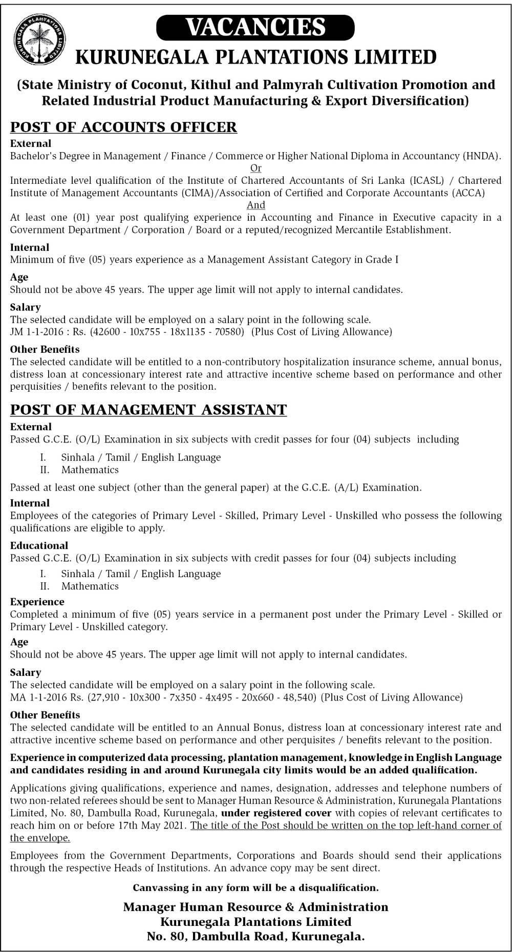 Management Assistant, Accounts Officer