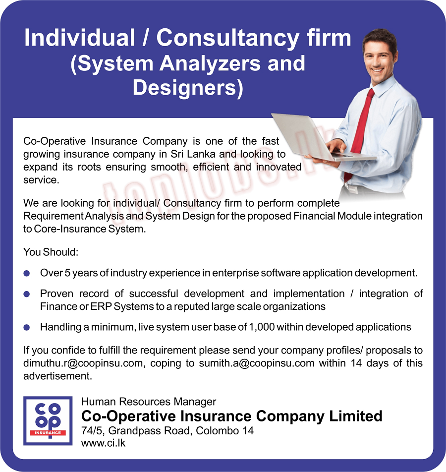 System Analyzers and Designer - Individual / Consultancy Firm