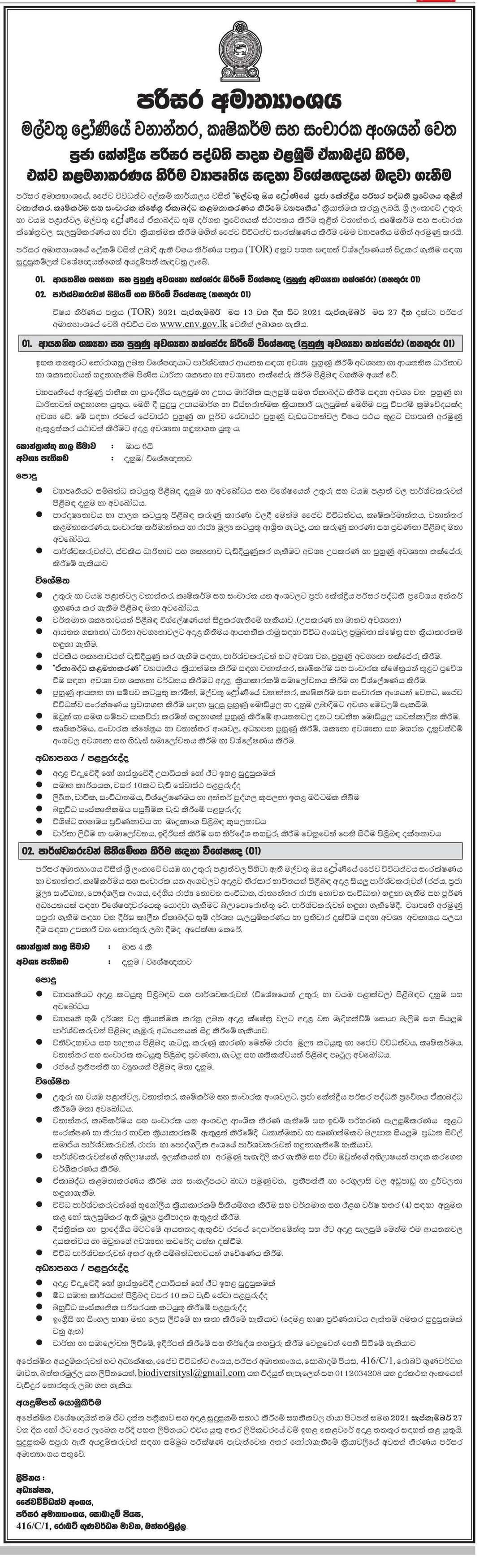 Corporate Feasibility and Training Requirement Assessment Specialist, Stakeholder Mapping Specialist